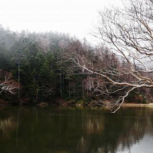 初冬の奥白根山