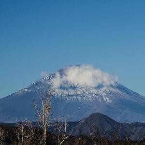 富士と相模の海