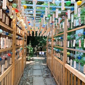 【夏のお出かけ】川越氷川神社 縁むすび風鈴