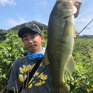 暑かった波介川