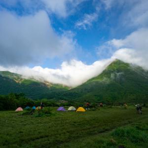 2019.06.05  平治岳のミヤマキリシマを見て来ましたよ!