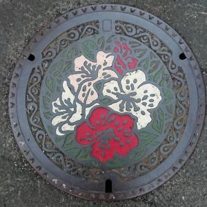東京都国分寺市のマンホール