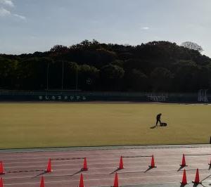 【目指せサブ3】明石城公園マラソン2020に出場した(滋賀のおっさんランナー)