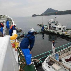 遠洋航海実習 11月26日から11月27日