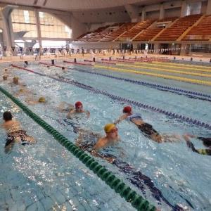 水泳訓練 その3