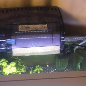 水槽リセット① 準備編 コトブキ プロフィットフィルターBigを購入