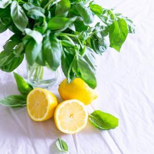 【レモン味が 好き!】夏季限定の味を楽しむ