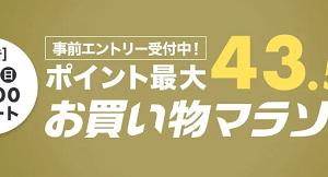 楽天お買い物マラソンに完走のための1,000円送料込み商品