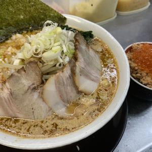 らーめん・つけめん八角さんが今年も高級鮭を使った『鮭味噌ラーメン』を販売!!