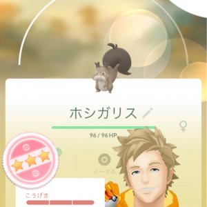 【ポケモンGO】スポットライトアワーが始まる直前に個体値MAXのホシガリスをGET!!