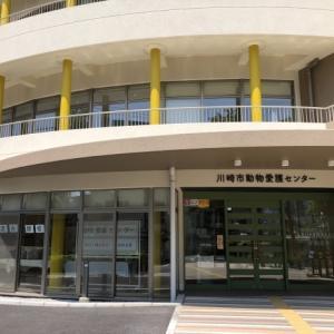 新しくなった川崎市動物愛護センターに行ってきました。