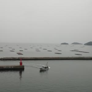 2/25〜3/1仮想トレードまとめと海が見える教室