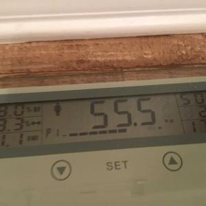ダイエット7日め 50.8キロ