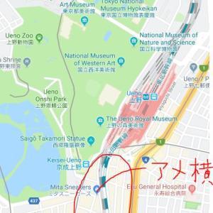 上野の静と動