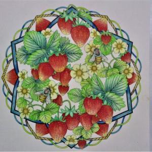 塗り絵 21-154