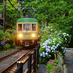江ノ電、6月22日から平日に1日乗車券「のりおりくん」の販売を再開
