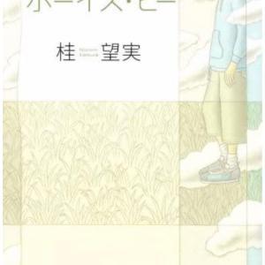【物語文】『ボーイズ・ビー』桂 望実