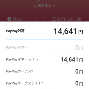 PayPayを毎日使ってみた