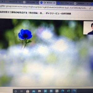 リモート講座 春の花編1