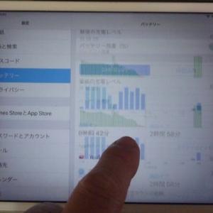 先日、iOS 12.4.6 にアップデートした iPad mini2 ですが、最近不具合が発生するようになってしまいました。