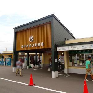 北海道 旭川巡り【夏の旭山動物園】