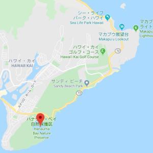 ハワイ自然巡り⑦【絶景三昧⑵、ハワイ王国宮殿】