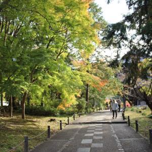秋の京都巡り⑦【南禅寺、永観堂】