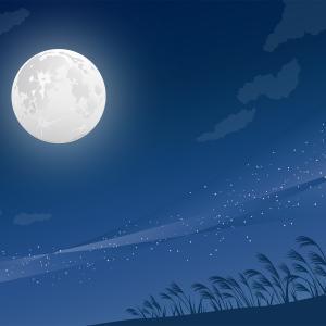 「仲秋の名月」の歌詠