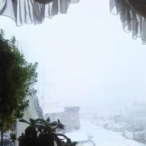 札幌雪景色!雪原ゴロッ!