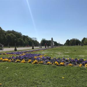 ニンフェンブルク城散歩