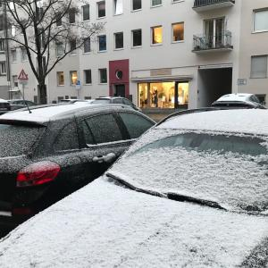 雪の日も春の日もある1週間