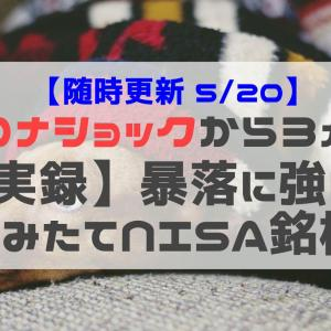 【実録】コロナショックで見る暴落に強い つみたてNISA銘柄(5/20時点)