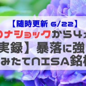 【実録】コロナショックで見る暴落に強い つみたてNISA銘柄(6/22時点)