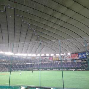 2019.7.22 続続・わたしは、都市対抗野球を見に行かなくてはならない。 【準々決勝】JFE東日本ーパナソニック