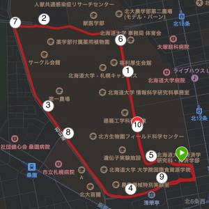 ひさびさの閾値走、設定3:29/km