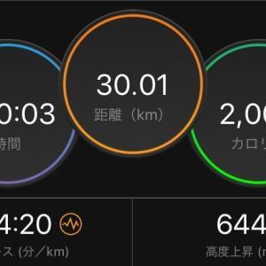 【勝田33日前】30km走と12kmペースラン
