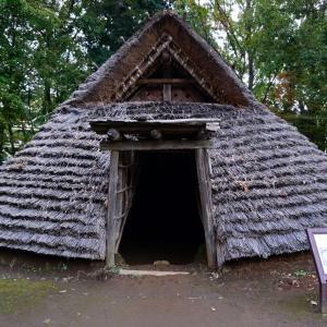 【大塚・歳勝土遺跡公園】縄文時代にタイムトリップできる公園