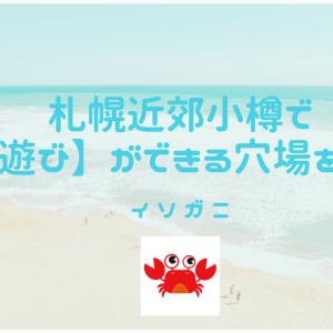小樽で【磯遊び】ができる穴場を紹介