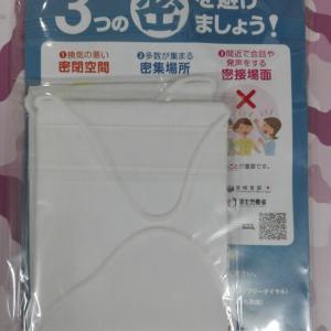 【アベノマスクは届いたけれど…そのサイズを比較してみました…】#171