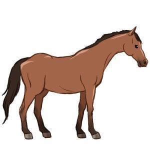 チューリップ賞2019 出走予定馬と注目馬