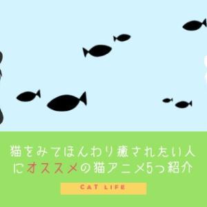 猫をみてほんわり癒されたい人にオススメの猫アニメ5つ紹介します