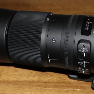 シグマ交換レンズ「SIGMA 150-600mm F5-6.3 DG OS HSM Contemporary」を購入しました【開封】