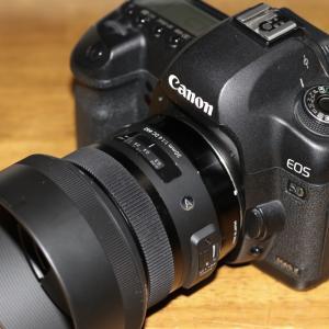 シグマ交換レンズ「SIGMA Art 30mm F1.4 DC HSM」をフルサイズ機で試用しました