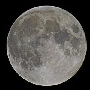 Canon EOS 80D + SIGMA 150-600mm F5-6.3 DG OS HSM Contemporary で月の写真を撮りました(2019年6月)