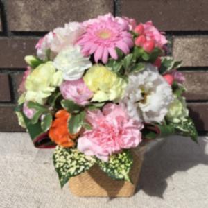 お嫁さんの誕生日に楽天ショップからお花を贈りました