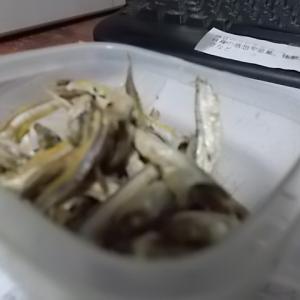 肉食の酸性体質でイライラ 白野菜でカルシウム不足でイライラ