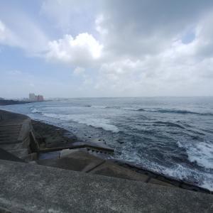 だから海はおもしろい