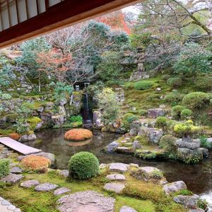 京都市民の京都観光 その3 の2