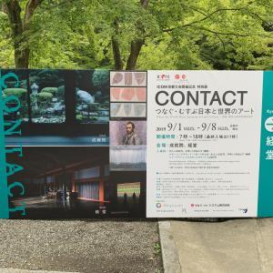 清水寺 CONTACT 展に 行ってきました