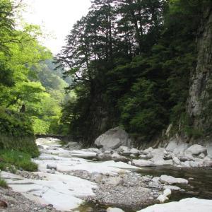 水質が最も良好な河川